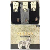 SYLTAN, Носки мужские, собачья шерсть, с медицинской резинкойх Арт.7201