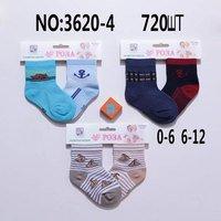 Роза, Носки для детские для мальчиков  малявок, цветные Арт.3620-4